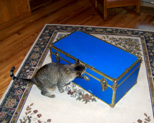 100_5502 Checking It Out